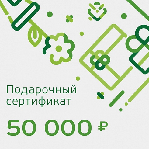 Подарочный сертификат номиналом 50 000 рублей для НеёПодарочные сертификаты<br>Подарочный сертификат номиналом 50 000 рублей для Неё<br><br>Цвет товара: Белый<br>Модификация: 50 000 ?