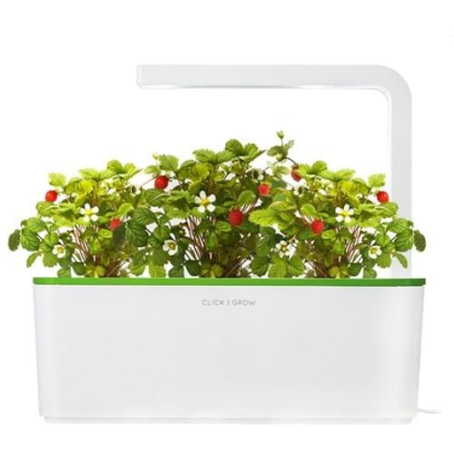 Умный сад Click and Grow Земляника (зелёная крышка)Умные сады и фермы<br>В системе Умный сад от Click and Grow есть все, что необходимо для нормального роста растения.<br><br>Цвет товара: Зелёный<br>Материал: Пластик