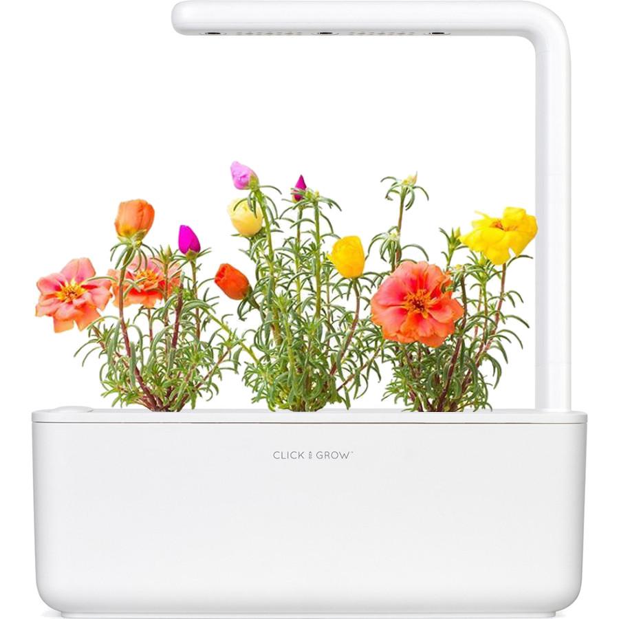 Умный сад Click and Grow Smart Garden 3 Роза Мускусная (белая крышка)Умные сады и фермы<br>В системе Умный сад от Click and Grow есть все, что необходимо для нормального роста растения.<br><br>Цвет товара: Белый<br>Материал: Пластик