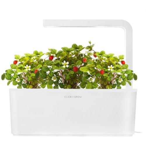 Умный сад Click and Grow Земляника (белая крышка)Умные сады и фермы<br>В системе Умный сад от Click and Grow есть все, что необходимо для нормального роста растения.<br><br>Цвет товара: Белый<br>Материал: Пластик