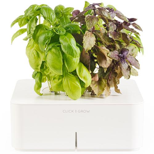 Смартпот Click and Grow БазиликУмные сады и фермы<br>Смартпот Click and Grow будет радовать прекрасными цветами и благоуханием, даря радость и вдохновение!<br><br>Цвет товара: Белый<br>Материал: Пластик