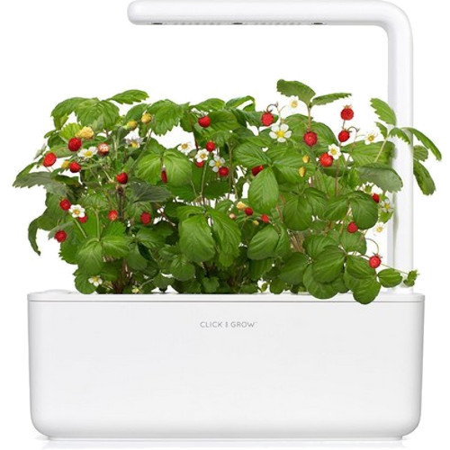 Умный сад Click and Grow Smart Garden 3 Земляника (белая крышка)
